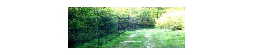 Filets japonais Ecotone blanc de 30 mètres de long : baguage oiseaux 70mm